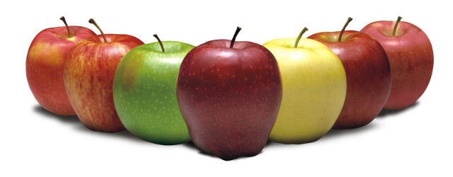 Washington Apples In India Chef At Large,Easy Cold Sandwich Recipes